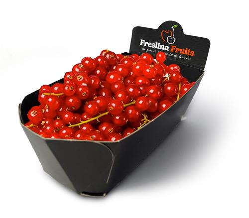 Freslina Fruits